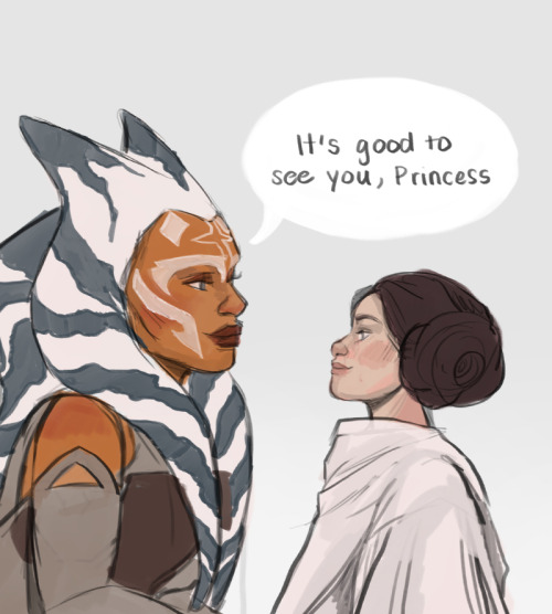"""It's good to see you, Princess"" (Image credit: Togrutan)"