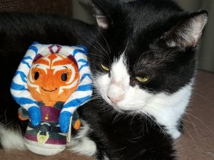 Rico posing with the Ahsoka Tano Itty Bitty